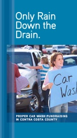 Car Wash Brochure Opens in new window
